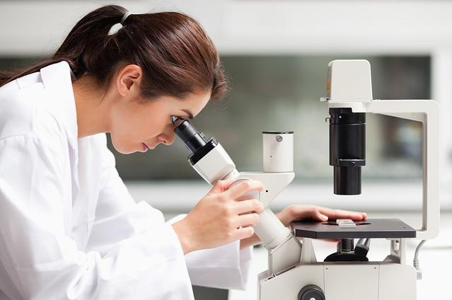 顕微鏡を覗く医師