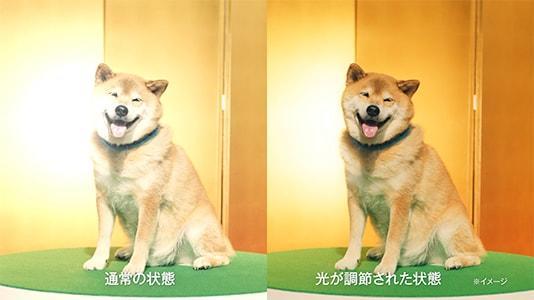 アキュビュー® オアシス® トランジションズ スマート調光™「柴犬まる」篇 15秒